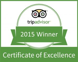 CertificateOfExcellence2015-1
